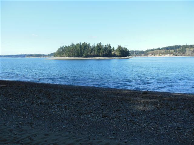 11605 Larson Rd, Anderson Island, WA - USA (photo 1)