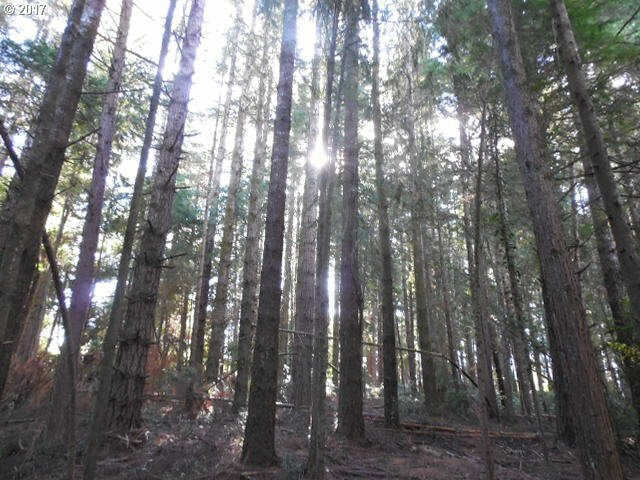 0 Newmark, North Bend, OR - USA (photo 3)
