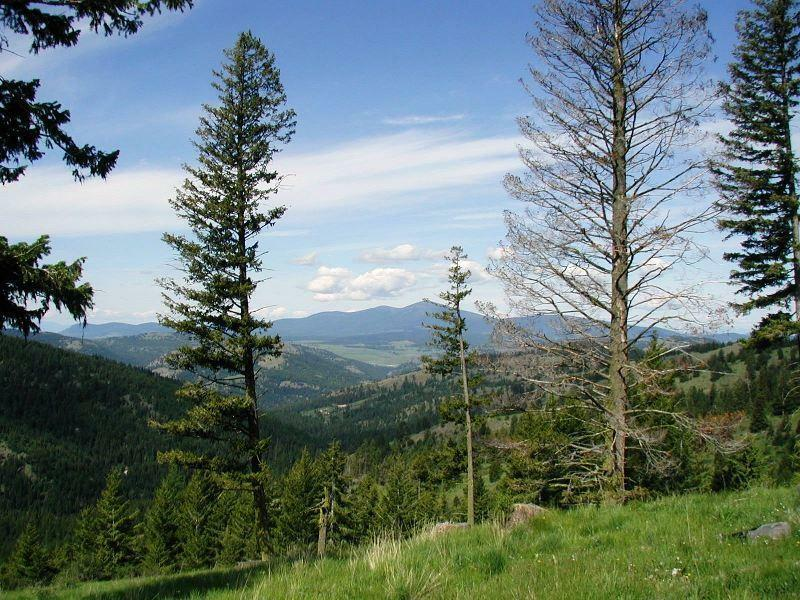 Tbd Horseshoe Mountain Rd, Republic, WA - USA (photo 1)