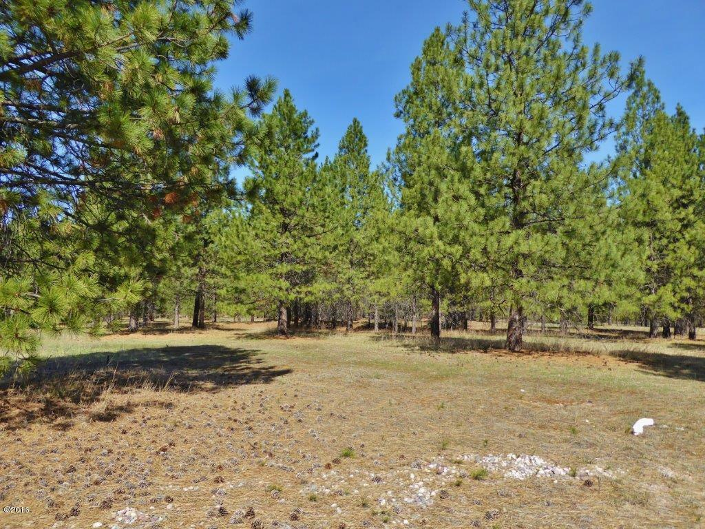 Lot 54 Turah Meadows, Clinton, MT - USA (photo 2)