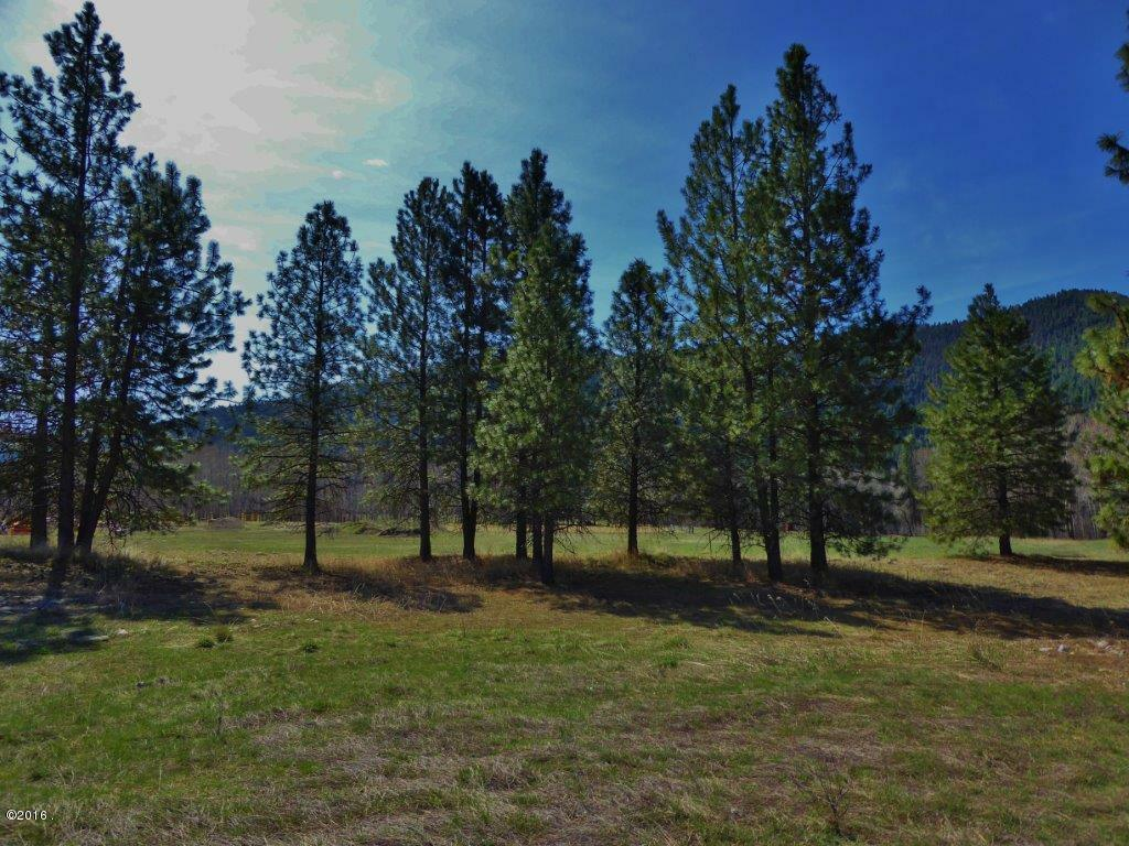 Lot 32 Turah Meadows, Clinton, MT - USA (photo 2)