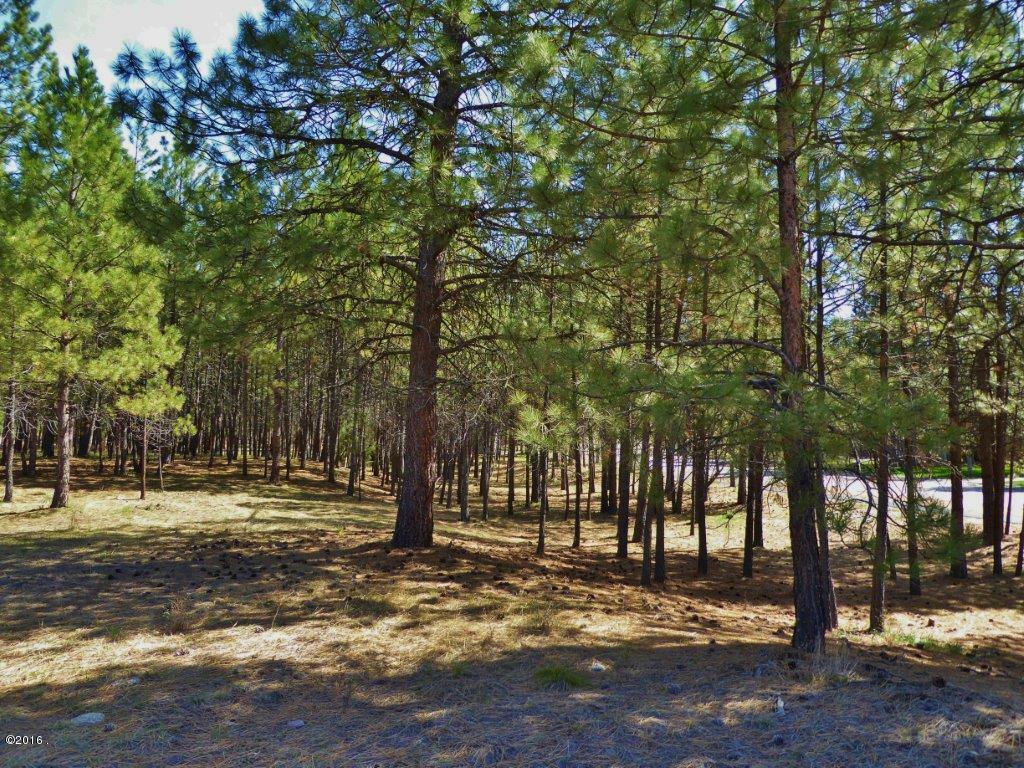 Lot 18 Turah Meadows, Clinton, MT - USA (photo 1)