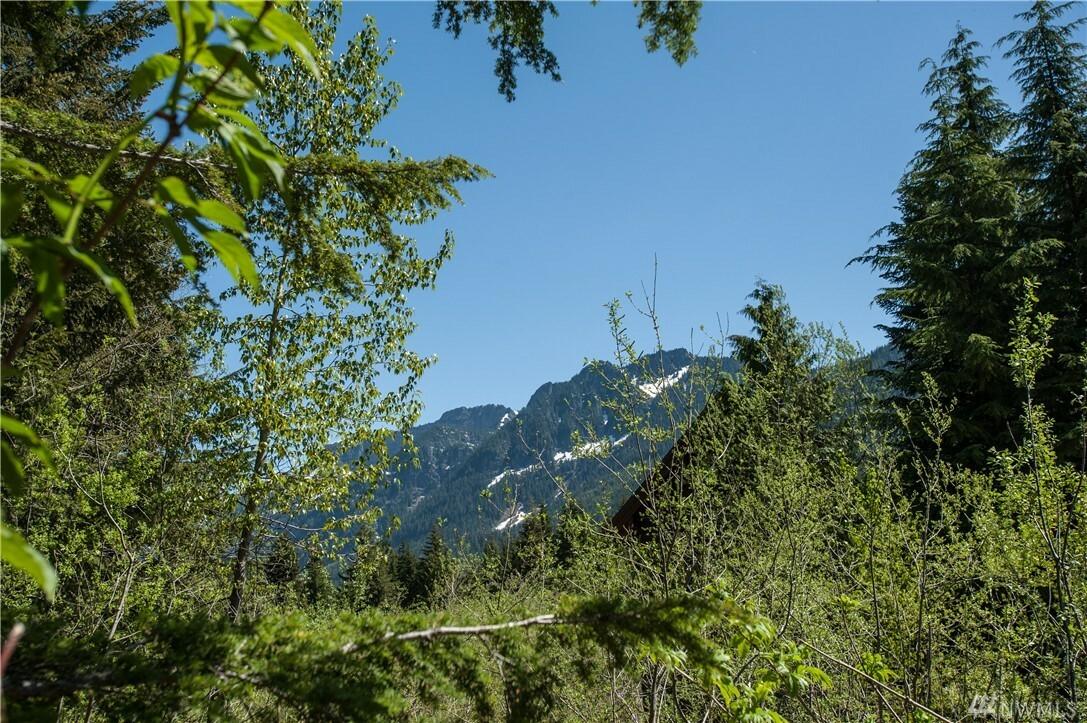 41 Romans Ct, Snoqualmie Pass, WA - USA (photo 2)
