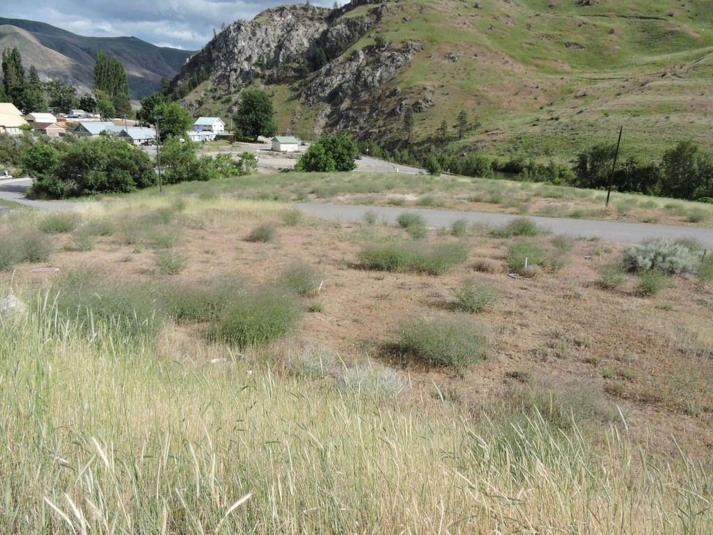 1003 Mesa Pl, Entiat, WA - USA (photo 2)
