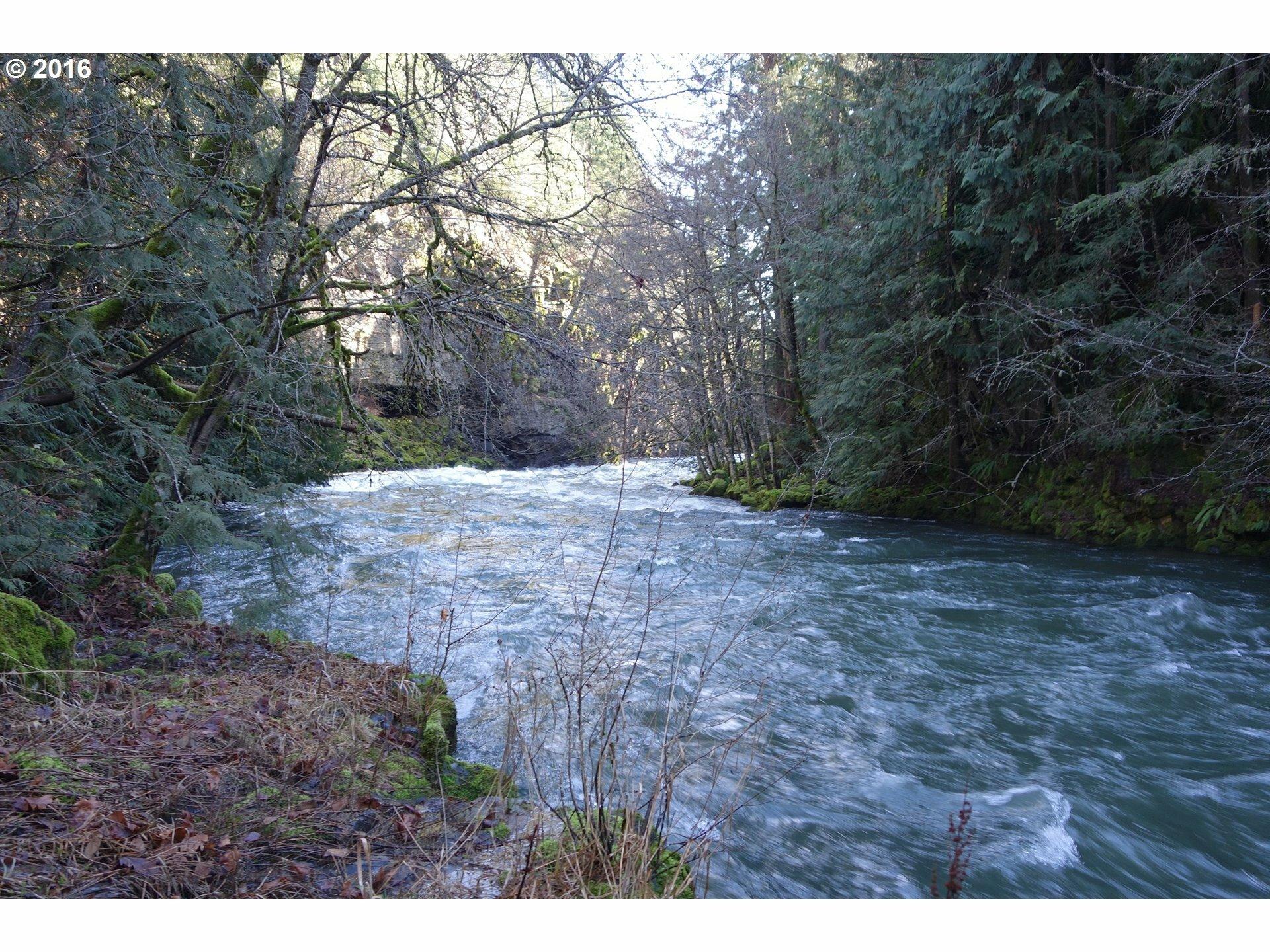 20 Forest Ln, White Salmon, WA - USA (photo 1)
