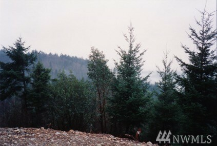 0 Chickadee Lane, Quilcene, WA - USA (photo 3)