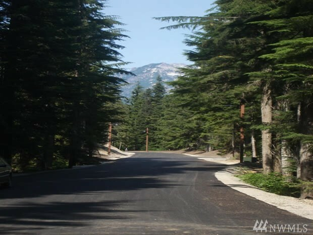 28 Cedar Lane, Snoqualmie Pass, WA - USA (photo 4)