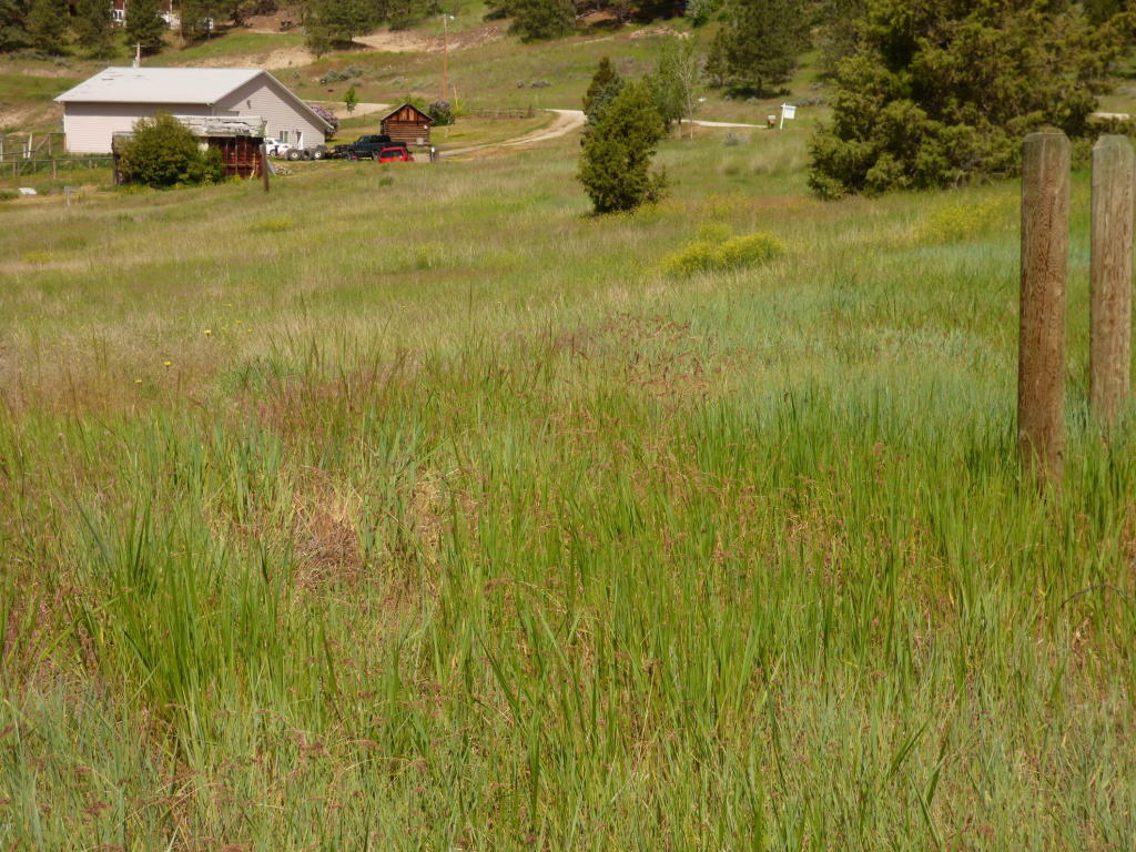 2891 Mcintyre Road, Stevensville, MT - USA (photo 4)