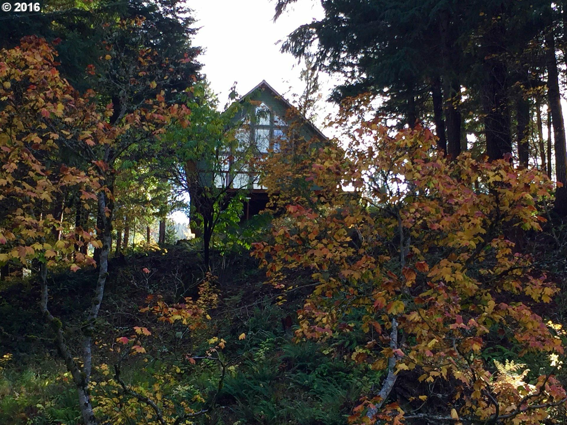 12 Husum Hills Dr, Husum, WA - USA (photo 4)