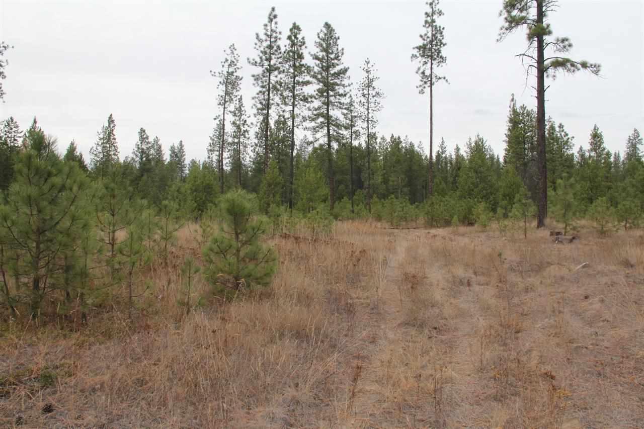 Lot 1 Woods Way, Springdale, WA - USA (photo 5)