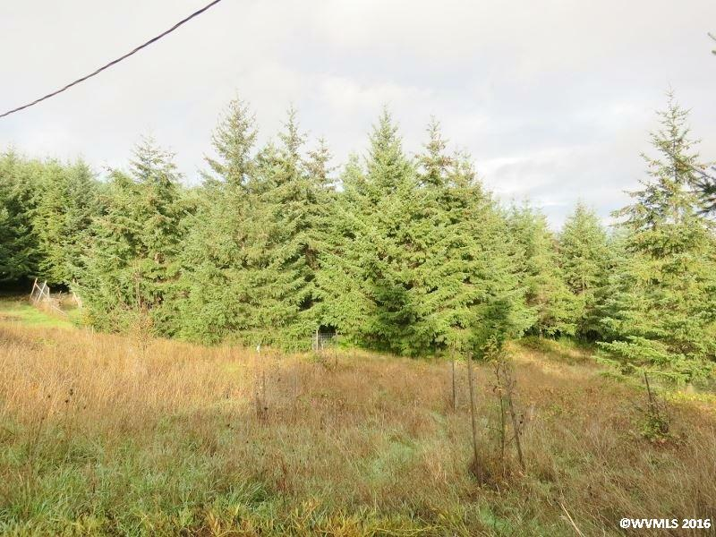 2045 James Howe Rd, Dallas, OR - USA (photo 4)