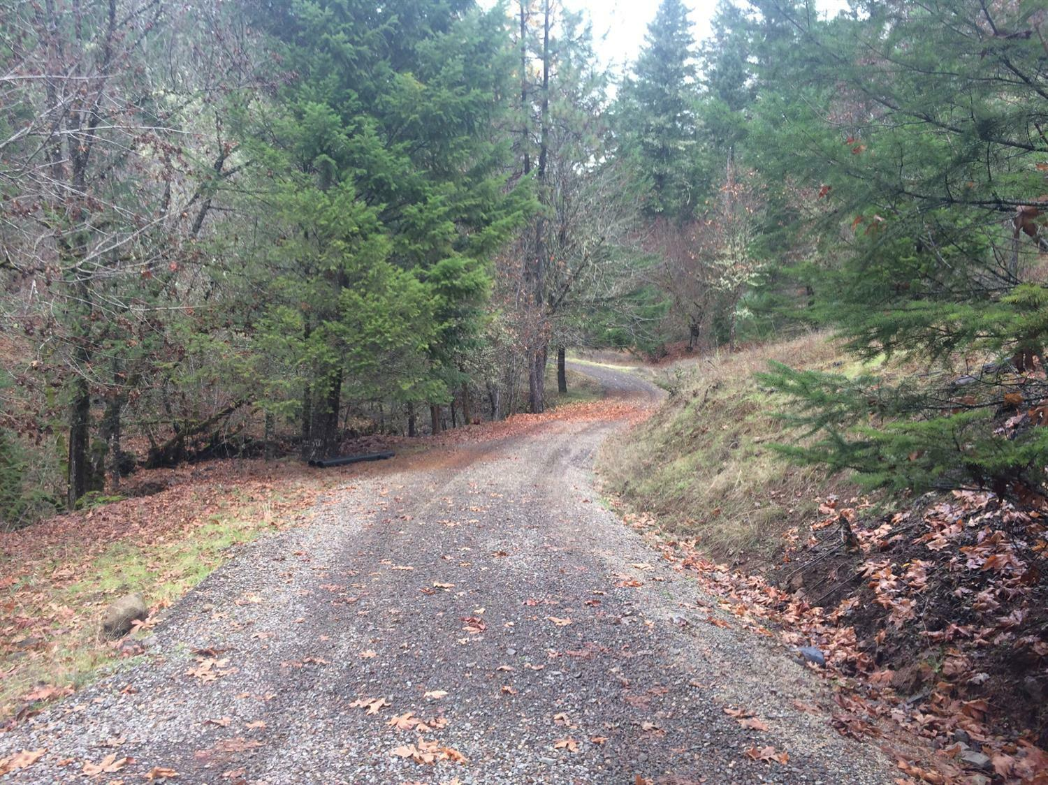 3969 Old Ferry, Shady Cove, OR - USA (photo 5)