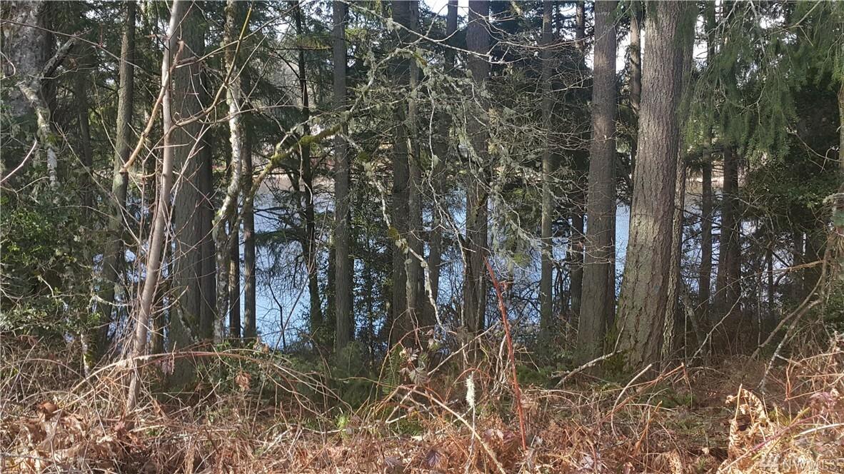 7035 Munn Lake Dr Se 156, Tumwater, WA - USA (photo 2)