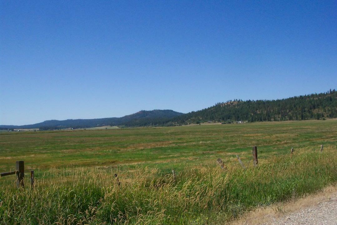 3258 Wa-231, Valley, WA - USA (photo 3)