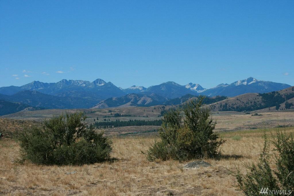 52 Davis Lake Ranch Rd, Winthrop, WA - USA (photo 3)