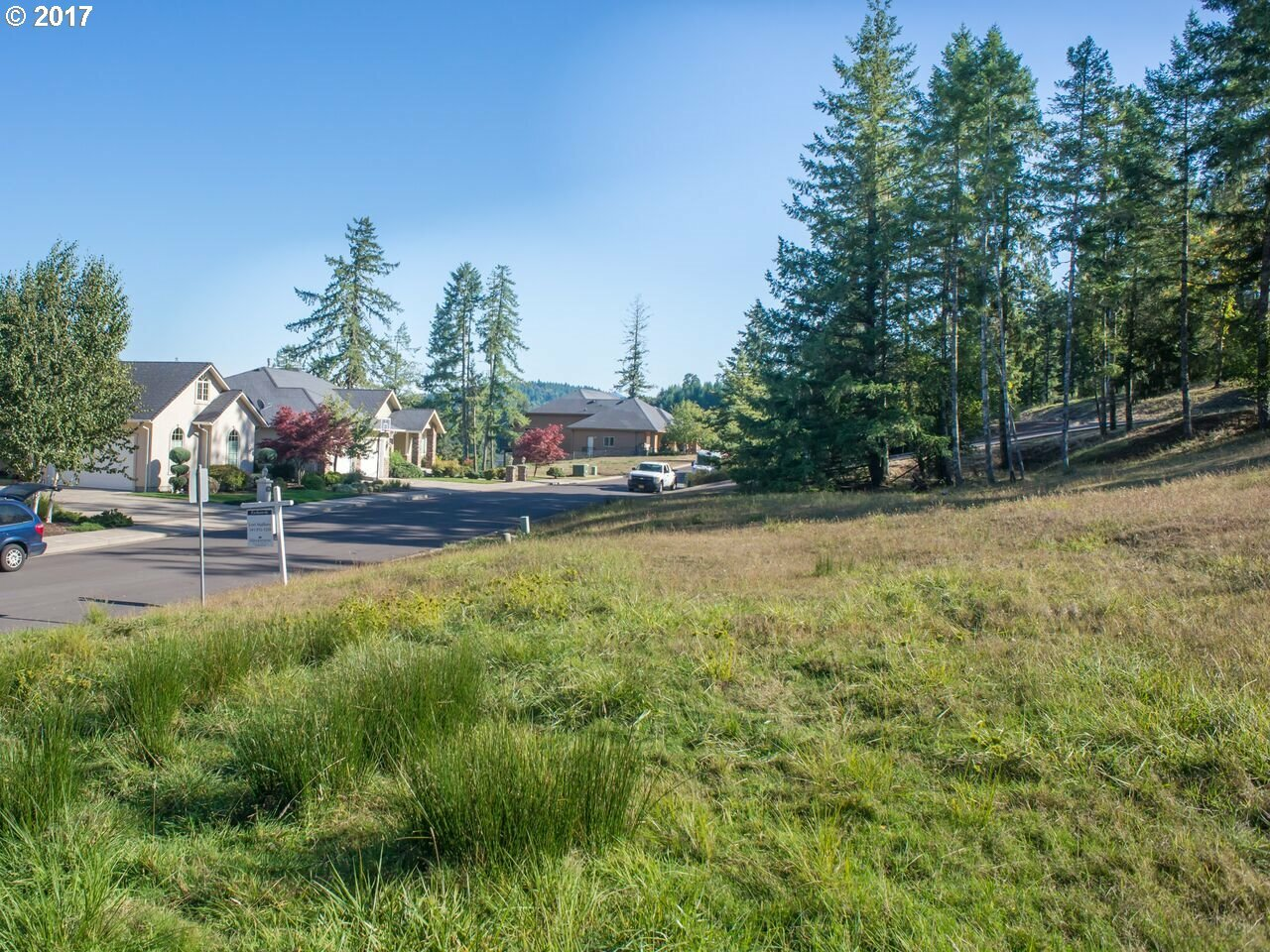 1135 Holly Ave, Cottage Grove, OR - USA (photo 1)