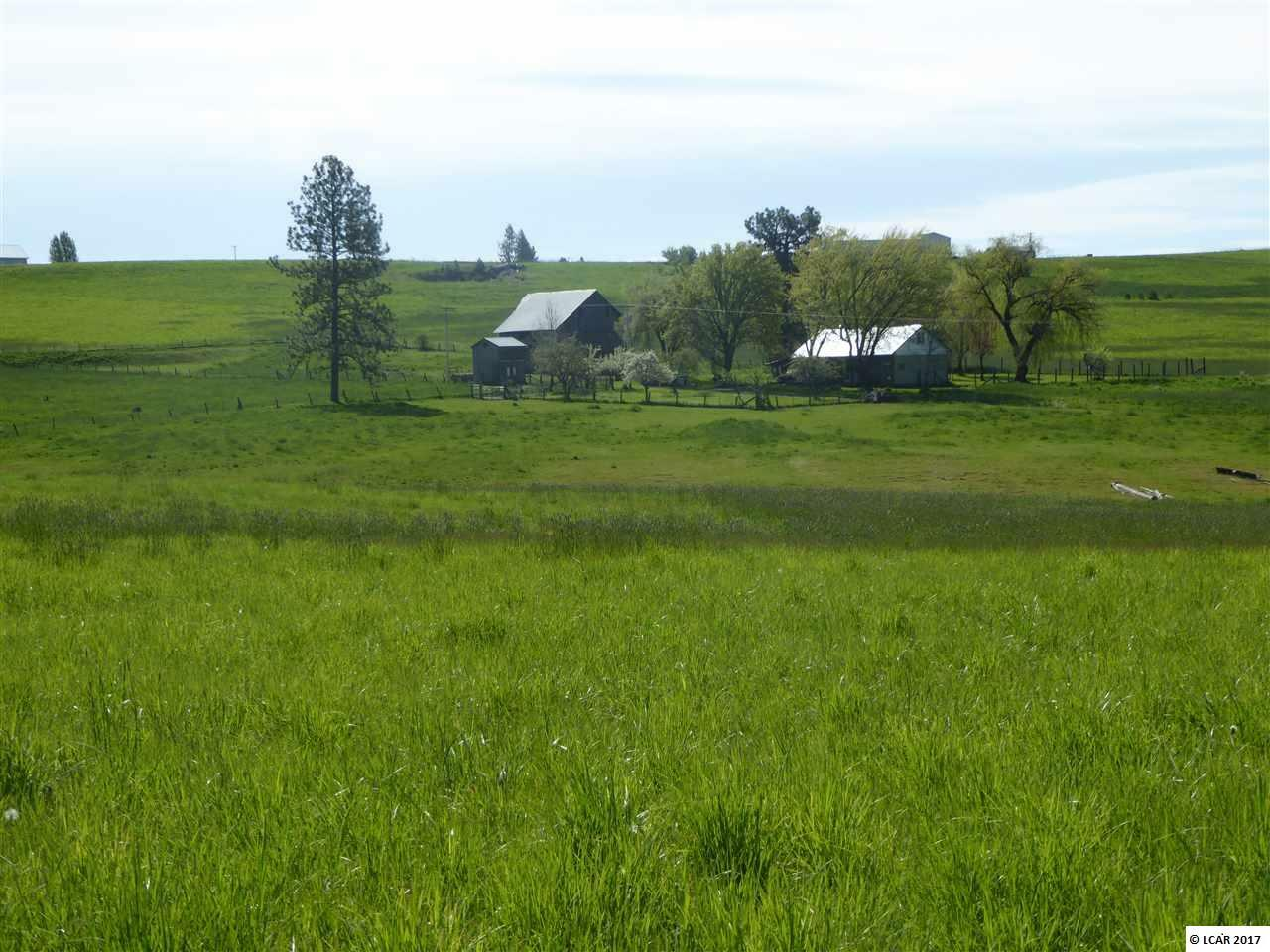 179 Schuster Road, Kamiah, ID - USA (photo 1)