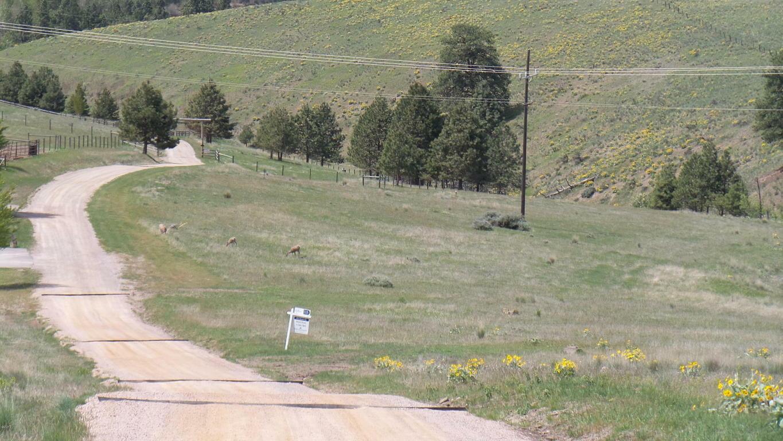 4112 Bronco Drive, Missoula, MT - USA (photo 5)