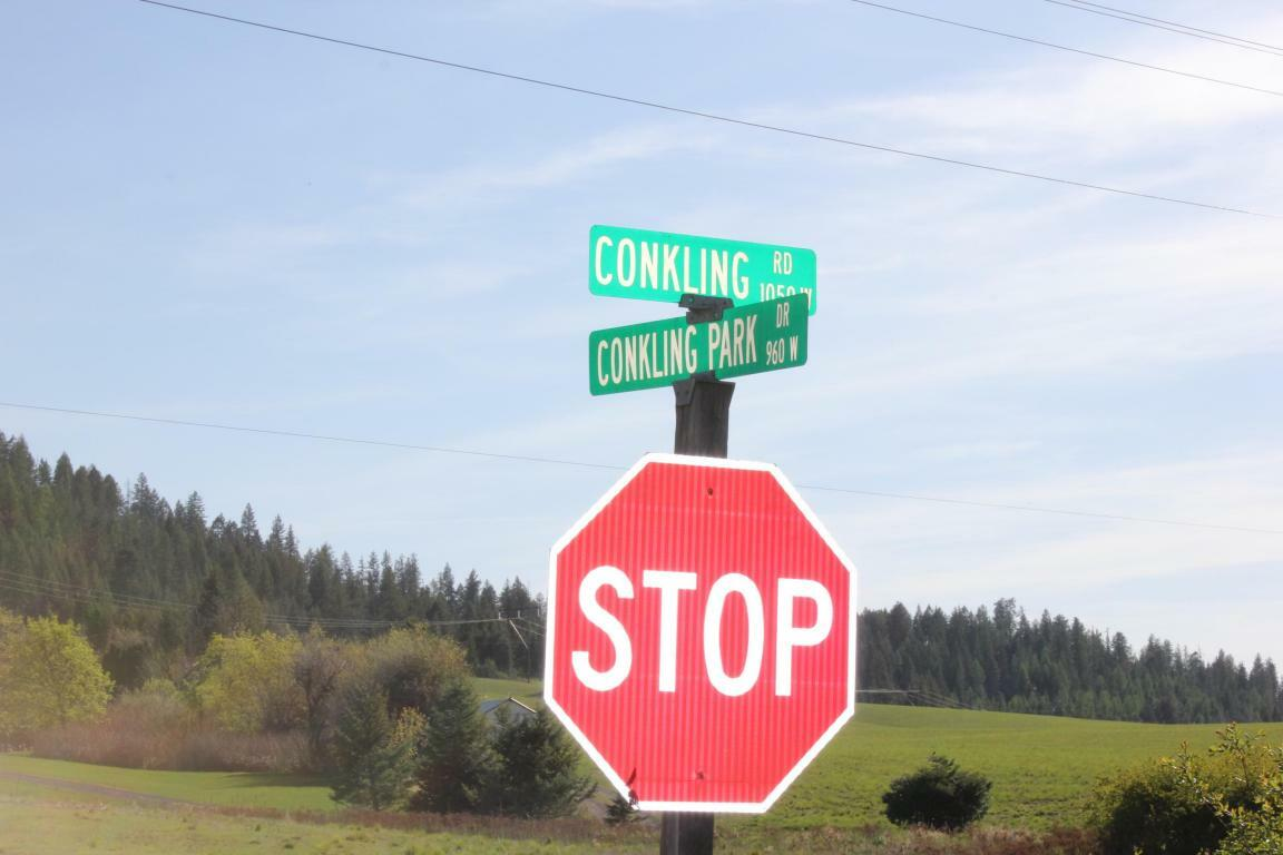 Nna Conkling Park Lot 4 And 5 Blk, Worley, ID - USA (photo 5)