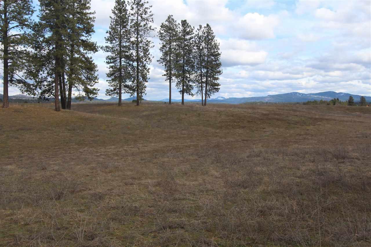 41xxx N Hardesty Rd, Elk, WA - USA (photo 4)
