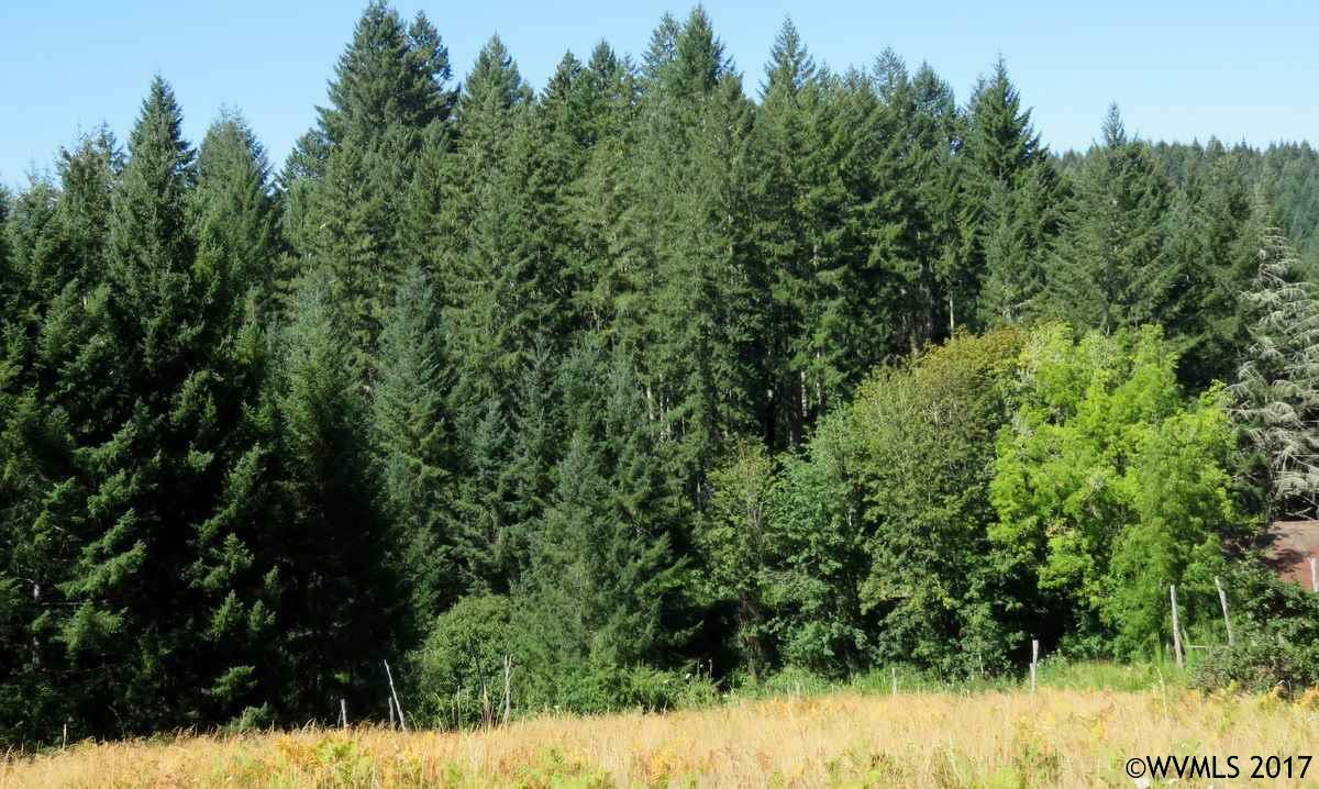 18700 Sw Indian Creek Rd, Willamina, OR - USA (photo 3)