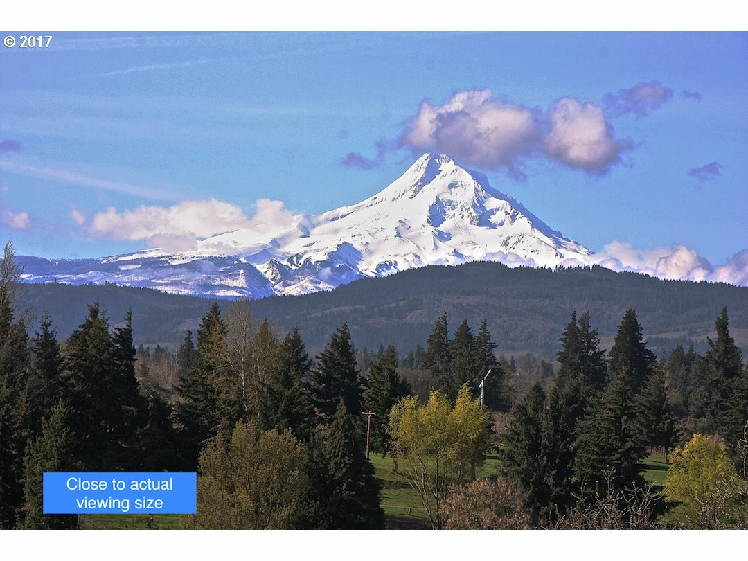 3549 Indian Cliff, Hood River, OR - USA (photo 4)