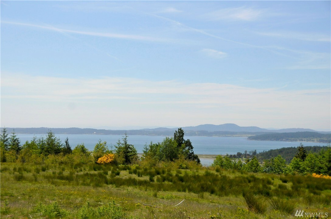 121314 Rum Runner Road, Lopez Island, WA - USA (photo 3)