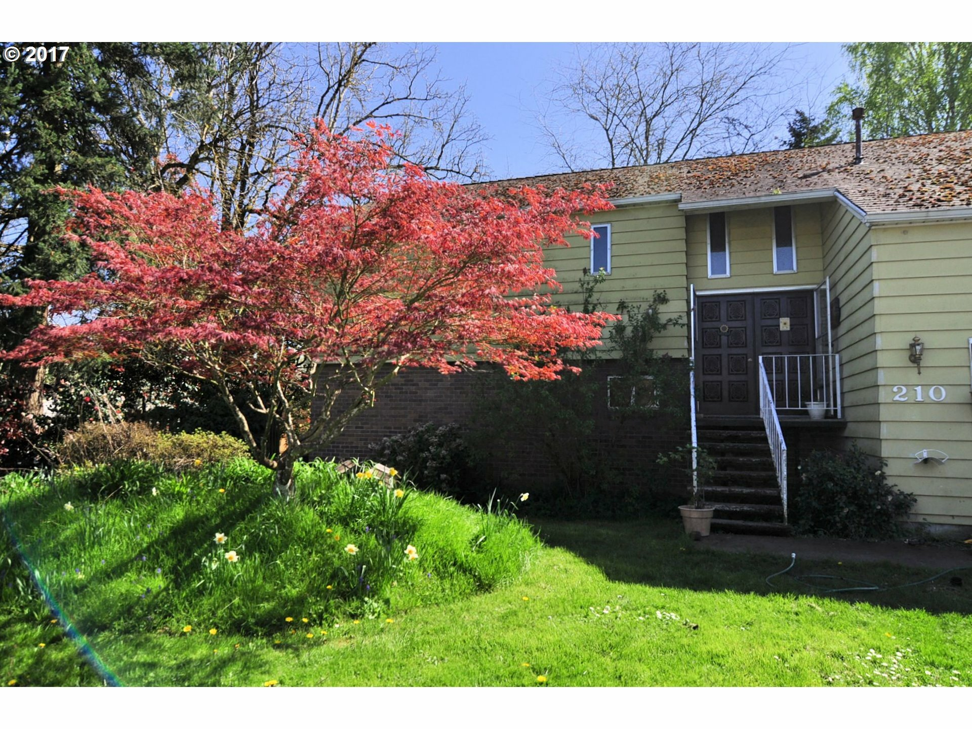 210 Tanglewood Dr, Jefferson, OR - USA (photo 1)