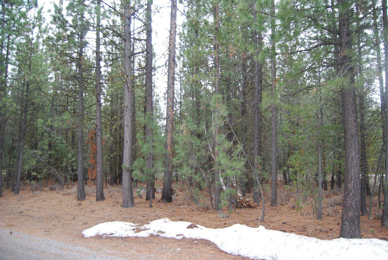 14801 Springwood Road, La Pine, OR - USA (photo 2)