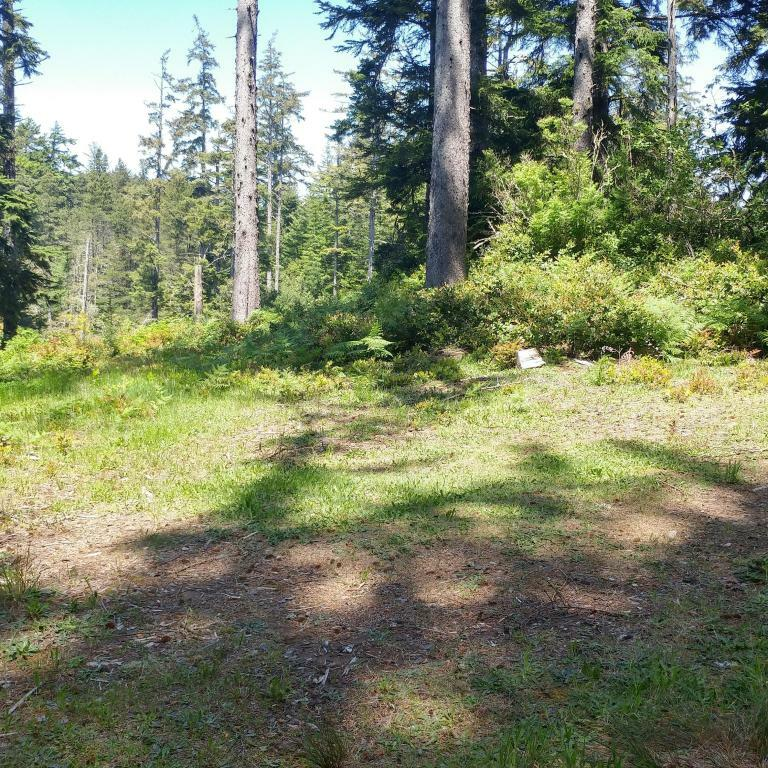 Lot 7 Nw Lotus Lake Dr., Waldport, OR - USA (photo 4)
