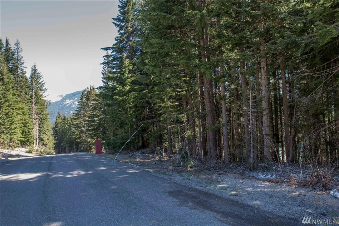1 Innsbruck Dr Lot79, Snoqualmie Pass, WA - USA (photo 2)