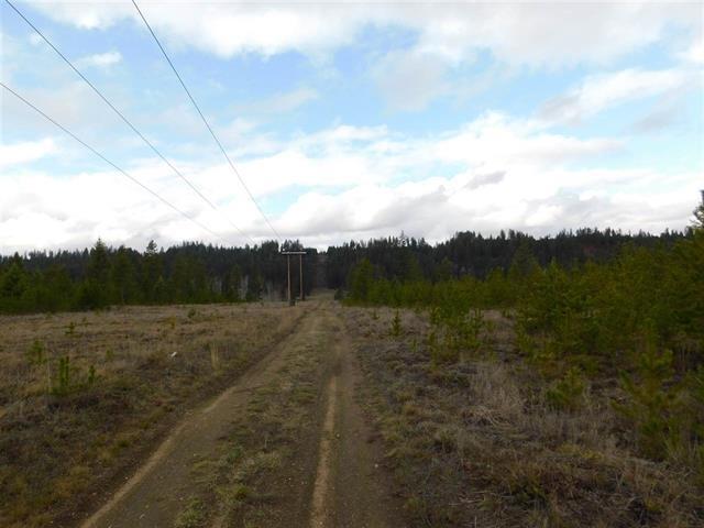 Nka Black Rail Ridge, Newport, WA - USA (photo 2)