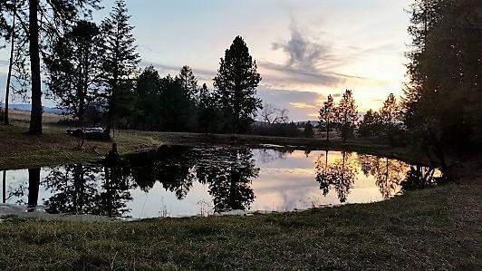 Nna Canyon Ridge Ln, Plummer, ID - USA (photo 3)