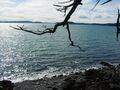 O rebe road, orcas island