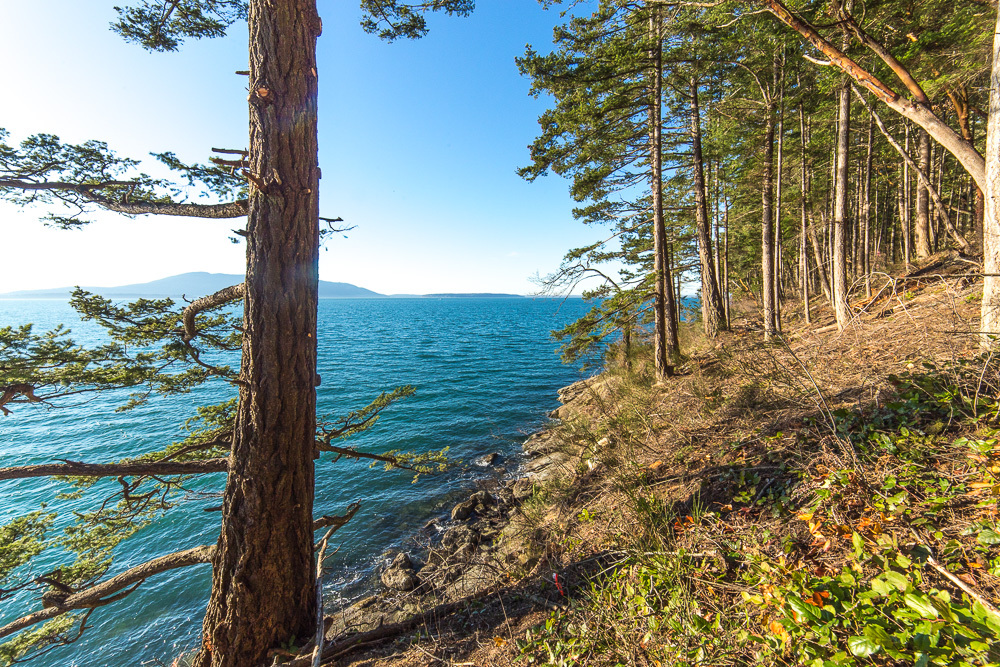 1 Governors Point, Bellingham, WA - USA (photo 4)