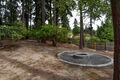 Back yard & fire-pit