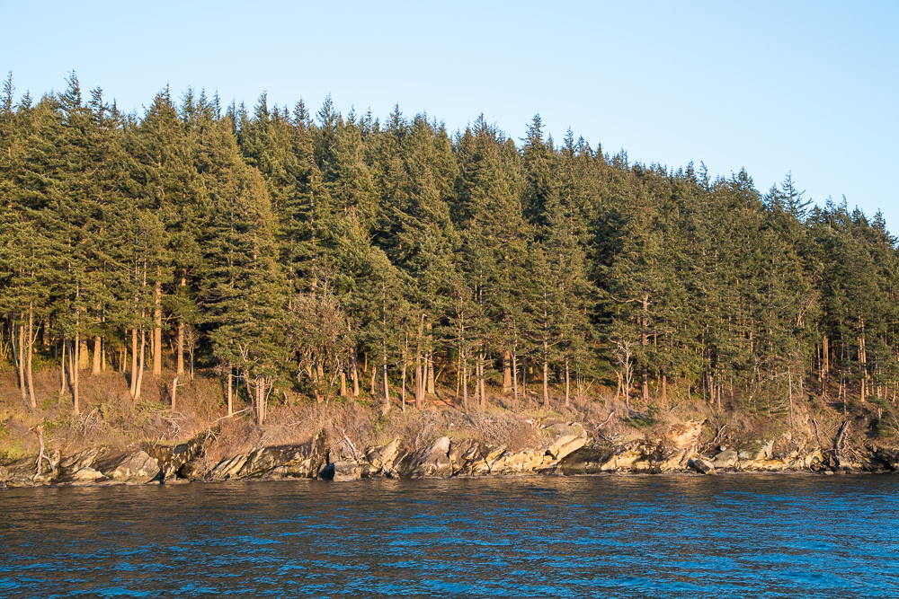 4 Governors Point, Bellingham, WA - USA (photo 5)